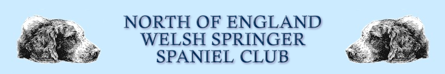 North of England Welsh Springer Spaniel Club